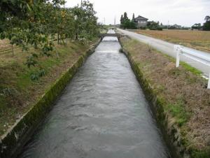 kunugiyamakaryu