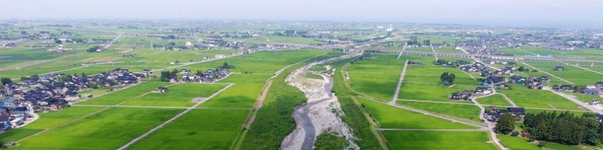 二級河川小川周辺